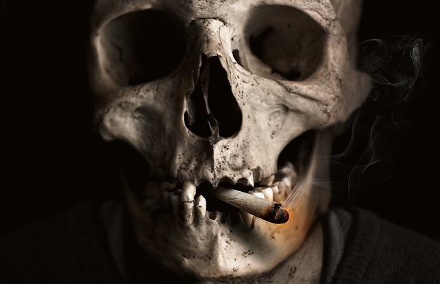 Bone Skull Smoking Skull And Crossbones Cigarette